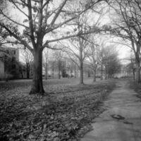 Lockefield_Gardens_-_central_mall_looking_northwest,_1983.jpg