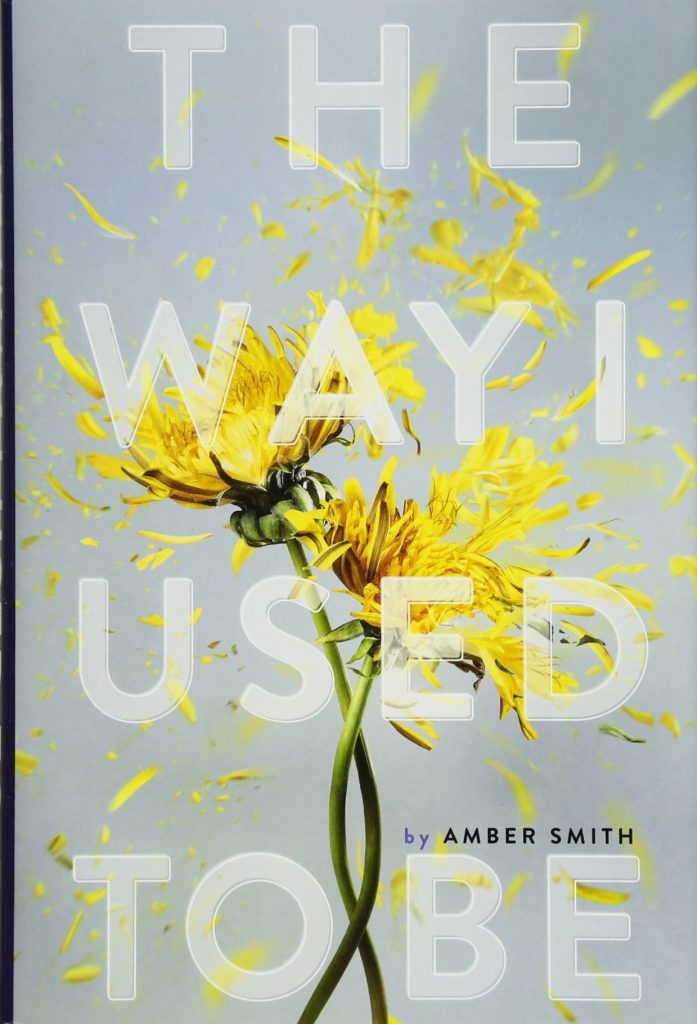 """Book cover for """"The Way I Used to Be"""" by Amber Smith"""