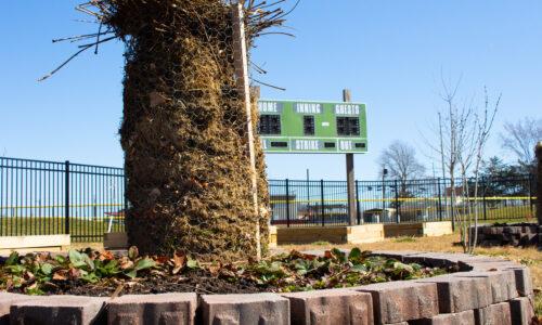 Rose Park aids in food desert